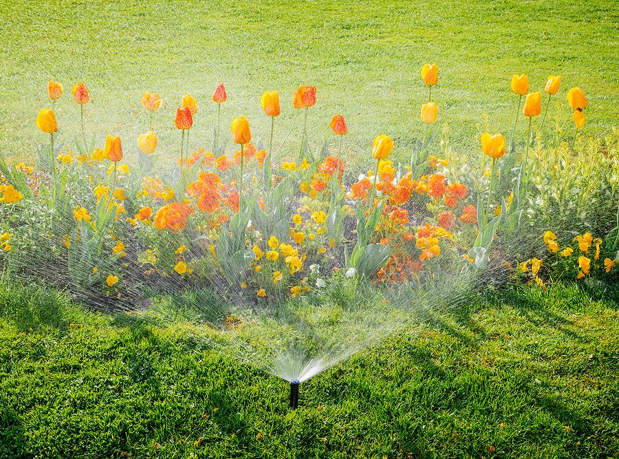 Spring sprinkler service cleveland